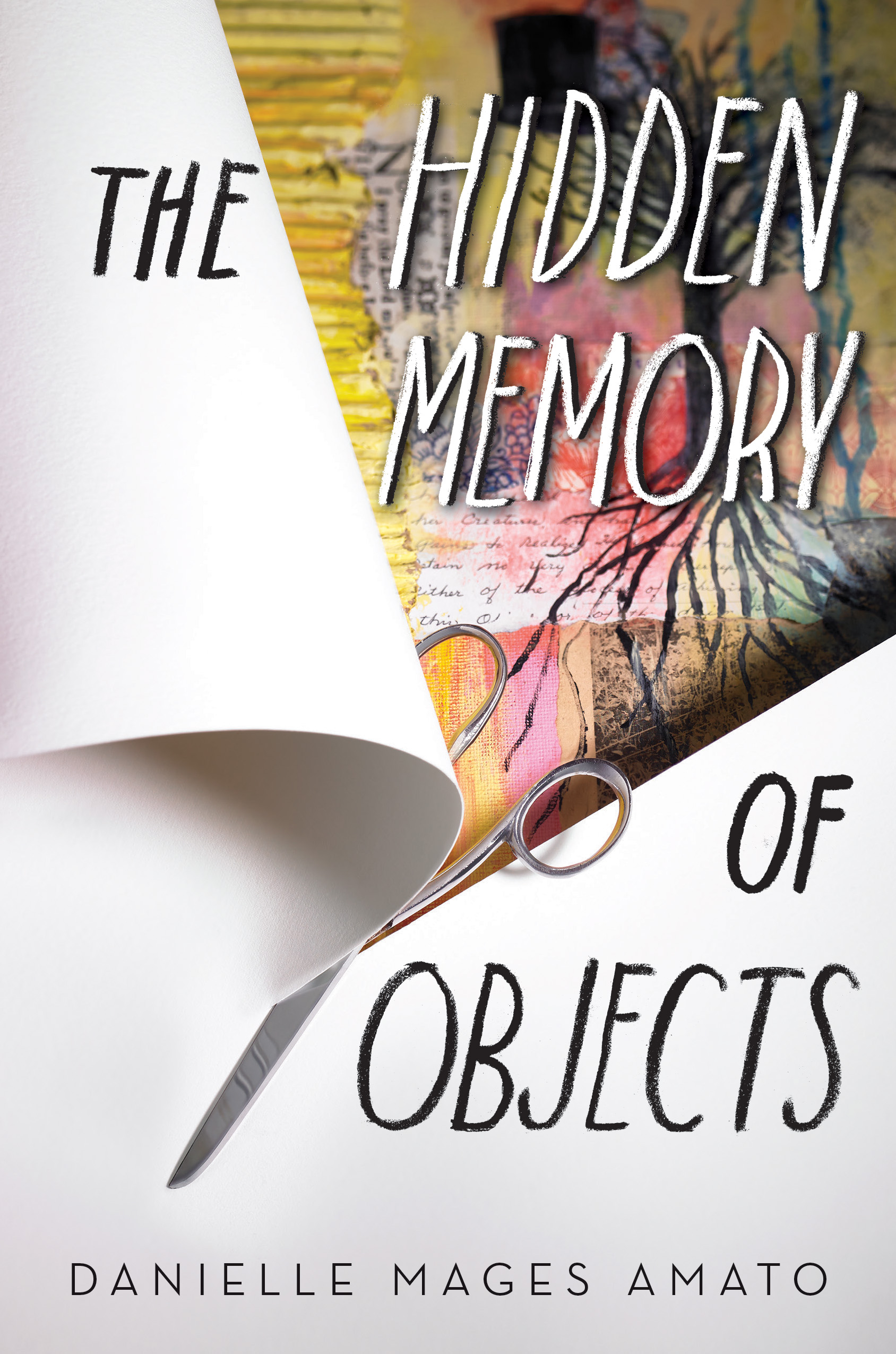 Image result for novel the hidden member of objects